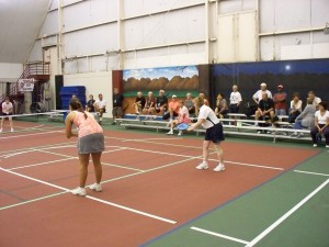 Kalamazoo Pickleball Rocks